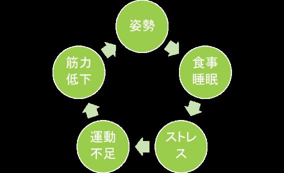羽村の整体院で体験するパーソナルトレーニング